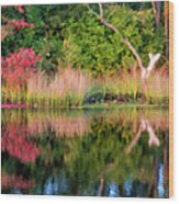 Early Fall Reflection Wood Print