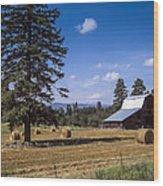 Early Harvest Wood Print