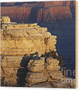 Early Light In The Canyon Wood Print