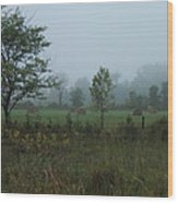 Early Morning In The Country Wood Print by Margaret McDermott