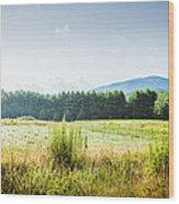 Early Morning Mist In The Valleys And Farmlands Of The Blue Ridge Mountains Wood Print
