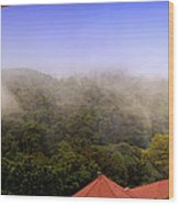 Early Morning Mist Over The Rain Forest Wood Print