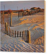 Early Morning On The Dunes I Wood Print by Steven Ainsworth