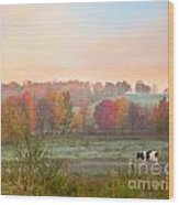 Early Morning Pasture Wood Print
