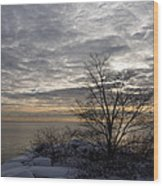 Early Morning Tree Silhouette On Silver Sky Wood Print