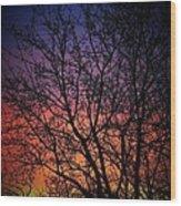 Early Spring Dusk  Wood Print
