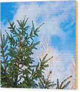 Early Spring - Featured 2 Wood Print