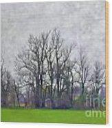 Early Spring Landscape  Digital Paint Wood Print