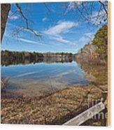 Early Spring On Long Pond Wood Print