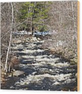 Early Spring Thaw Wood Print