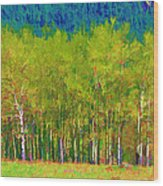 Early Summer Aspen Wood Print