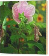 Early Summer Bloom Wood Print