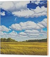 Early Summer Clouds Wood Print