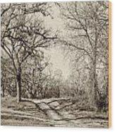 Early Winter Wood Print