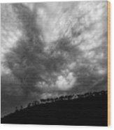 Earth And Sky No.19 Wood Print
