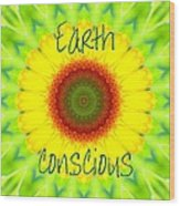 Earth Conscious 1 Wood Print