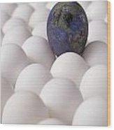 Earth Egg Pollution Wood Print