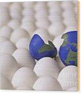 Earth Egg Torn Apart Wood Print