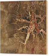 Earth Stone Wood Print