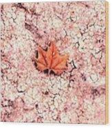 Earthy Wood Print