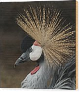 East African Crowned Crane 2 Painterly Wood Print