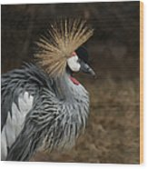 East African Crowned Crane Painterly Wood Print