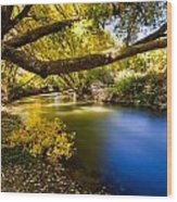 East Canyon Creek Wood Print