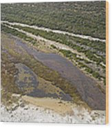 East Coast Aerial Near Jekyll Island Wood Print