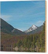 East Goat Mountain Wood Print