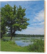 East Harbor State Park - Scenic Overlook 2 Wood Print