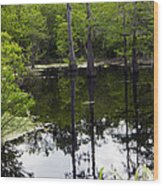 East Texas Cyprus Pond Wood Print