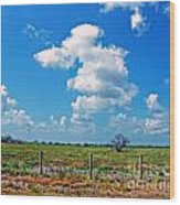 East Texas View Wood Print