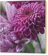 Easter Bouquet Flowers Mums And Dahlia Wood Print