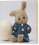 Easter Egg And Bunny Wood Print