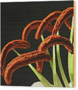 Easter Lily Detail Wood Print