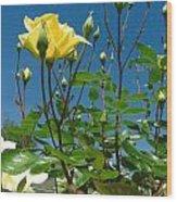 Easter-rose Wood Print