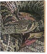 Eastern Diamondback Rattlesnake 1 Wood Print