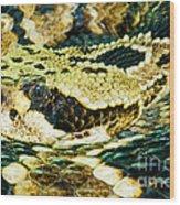 Eastern Diamondback Rattlesnake Wood Print