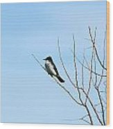 Eastern Kingbird In A Tree Wood Print