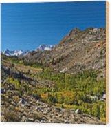 Eastern Sierras 11 Wood Print
