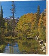 Eastern Sierras 16 Wood Print