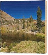 Eastern Sierras 18 Wood Print