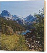 Eastern Sierras 23 Wood Print