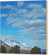 Eastern Sierras Panoramic - U S 395 California Wood Print