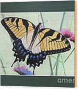 Eastern Tiger Swallowtail Butterfly By George Wood Wood Print