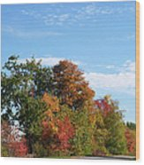 Eastman Lake Trail Wood Print