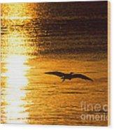 Easy Glider Wood Print