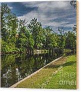Eaton Rapids Island Park Wood Print