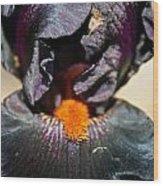 Ebony Iris Wood Print