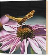 Echinacea And Friend Wood Print